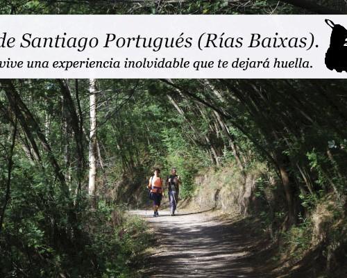 enclave-deportivo-camino-portugues01