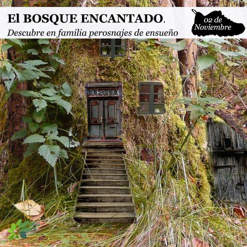 enclave-deportivo-bosque-encantado-portada