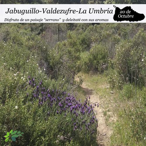 enclave-deportivo-jabuguillo-valdezufre-la-umbria-portada