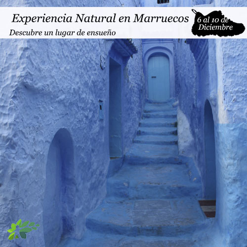 enclave-deportivo-marruecos-portada- dic2019