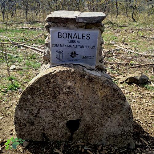encalve-deportivo-bonales-2020