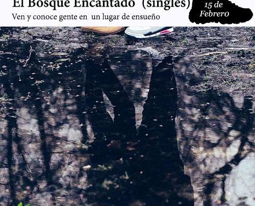 enclave-deportivo-bosque-encantado-portada-singles-2020