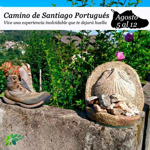 enclave-deportivo-camino-portugues-2020