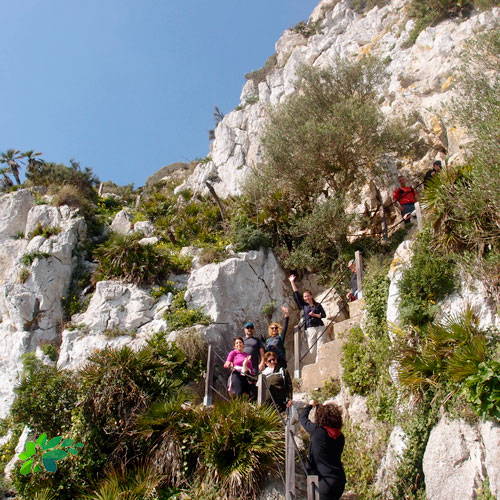enclave-deportivo-senderismo-gibraltar6