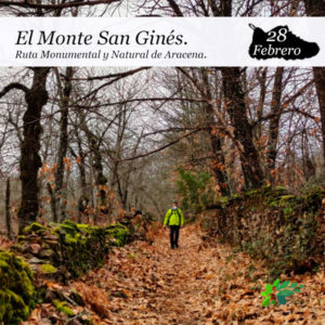enclave-deportivo-monte-san-gines6