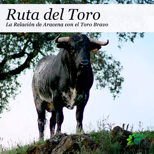 enclave-deportivo-rutas--senderismo-aracena-toro
