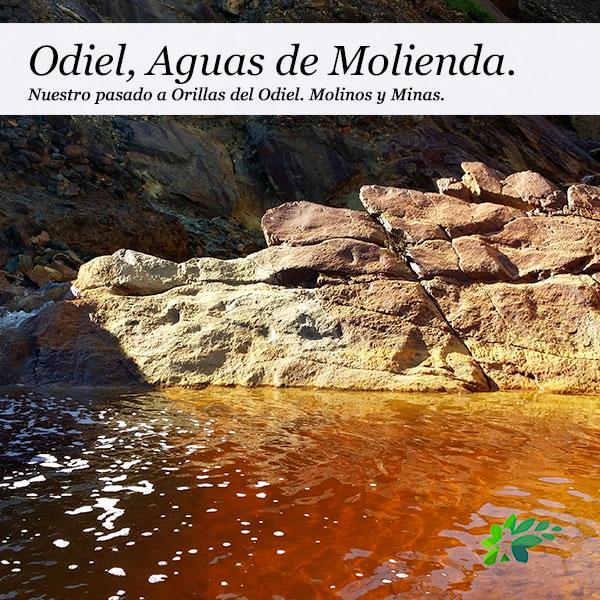enclave-deportivo-MOLINOS-DEL-ODIEL1
