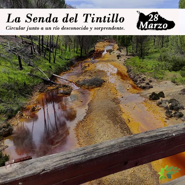 enclave-deportivo-senda-del-tintillo22