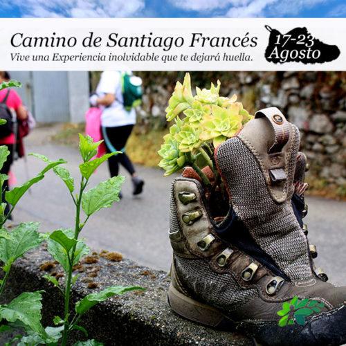 enclave-deportivo-camino-de-santiago-frances