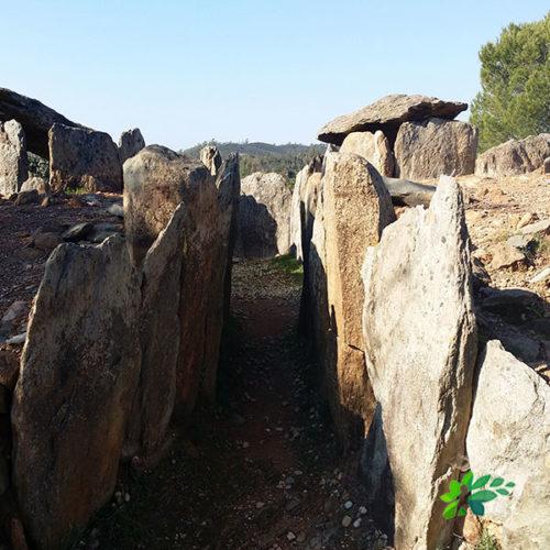 enclave-deportivo-ortadas-dolmenes-del-pozuelo1