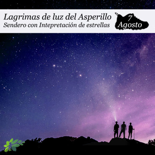 LAGRIMAS ASPERILLO