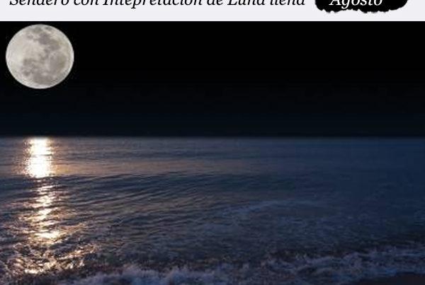 enclave-deportivo-luna-rio-piedras
