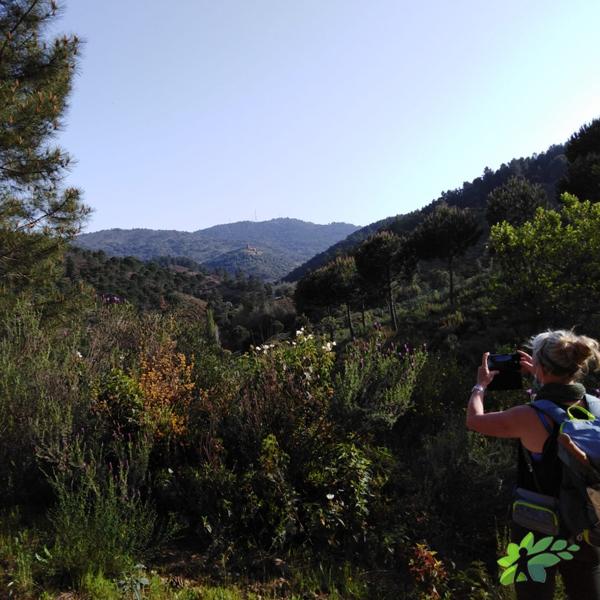enclave-deportivo-senderismo octubre-ribera de la escalada3